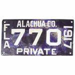 florida license plate 1917